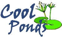 Cool Ponds Logo CMYK no shadow PNG